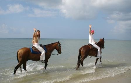 Tour Isla Margarita Cabalgata Mixta De Medio D 237 A