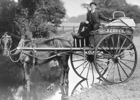 Photograph of Chuck's Bakers cart c 1910
