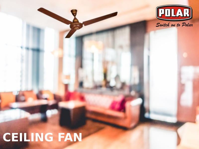 Get The Most Out Of Living Room Ceiling Fan Even today, most of the people rely on ceiling fans when the summers  arrive. So, letu0027s debunk some myths about ceiling fans manufactured by a Ceiling  Fans ...