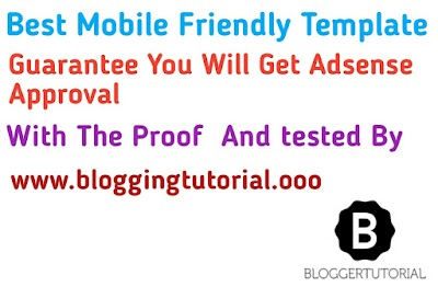 Get approval from google adsense using these template