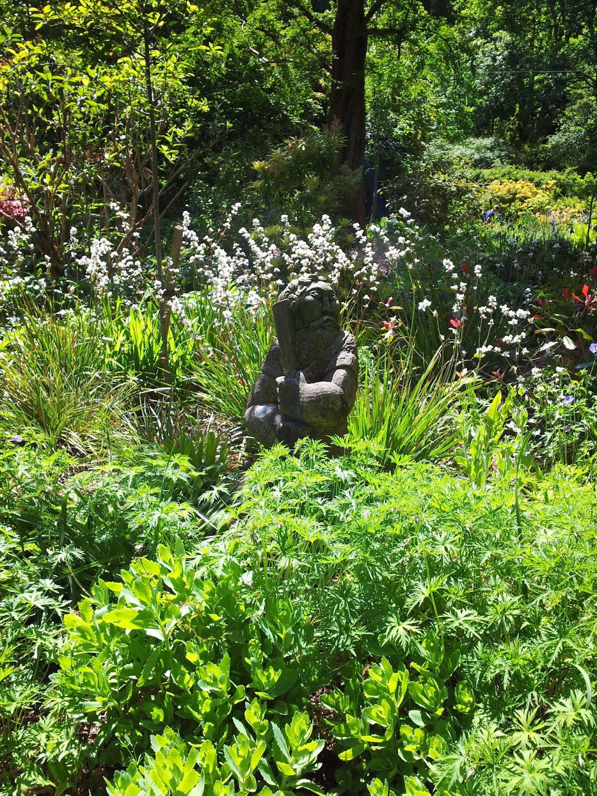 , A Beautiful Day Out at Colby Woodland Gardens National Trust Wales