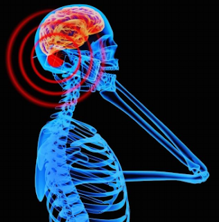 Cell Phone and Brain Cancer