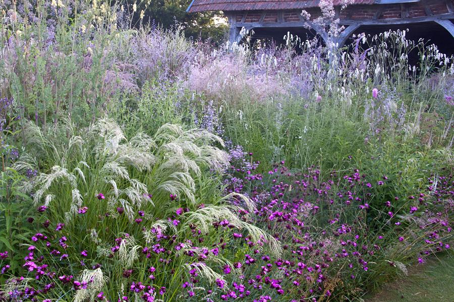 Matin lumineux le jardin plume for Le jardin plume