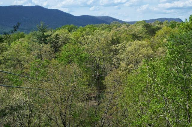 Zip Line at Shenandoah River State Park