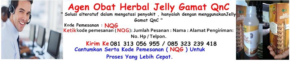Obat Tradisional Jelly Gamat QnC
