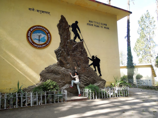 8-Himalayan-Mountaineering-Institute
