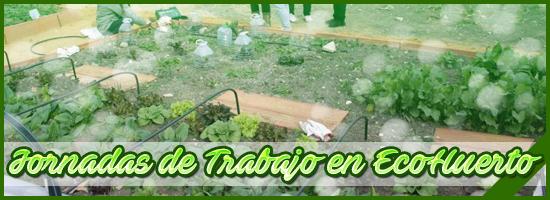 Banner 156 VerdeZona