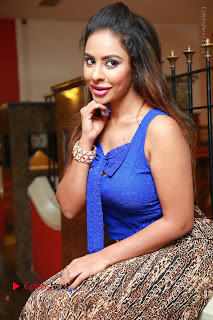 Telugu Actress Srilekha Reddy Latest HD Pos in Sleeveless Blue Top at Muse Art Gallery  0085.JPG