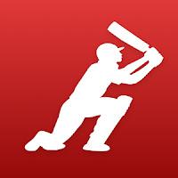 Dream11 fantasy cricket