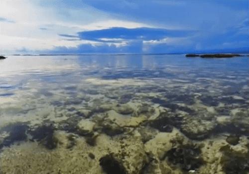 jernihnya air laut pantai tanjung setia