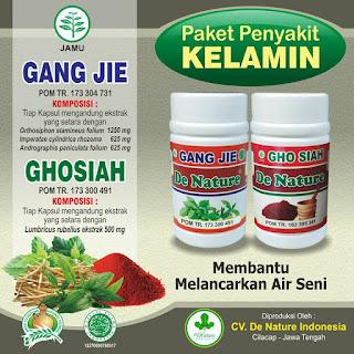 obat herbal untuk alat reproduksi pria bernanah