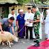 Wujud Syukur, Kodim 0821 Lumajang Laksanakan Penyembelihan Hewan Kurban