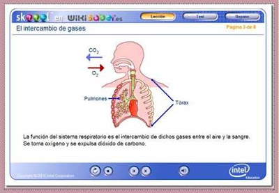 http://www.skoool.es
