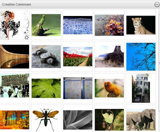 Image: Everystockphoto.com is a license-specific photo search engine | leading portal for the stock photography community