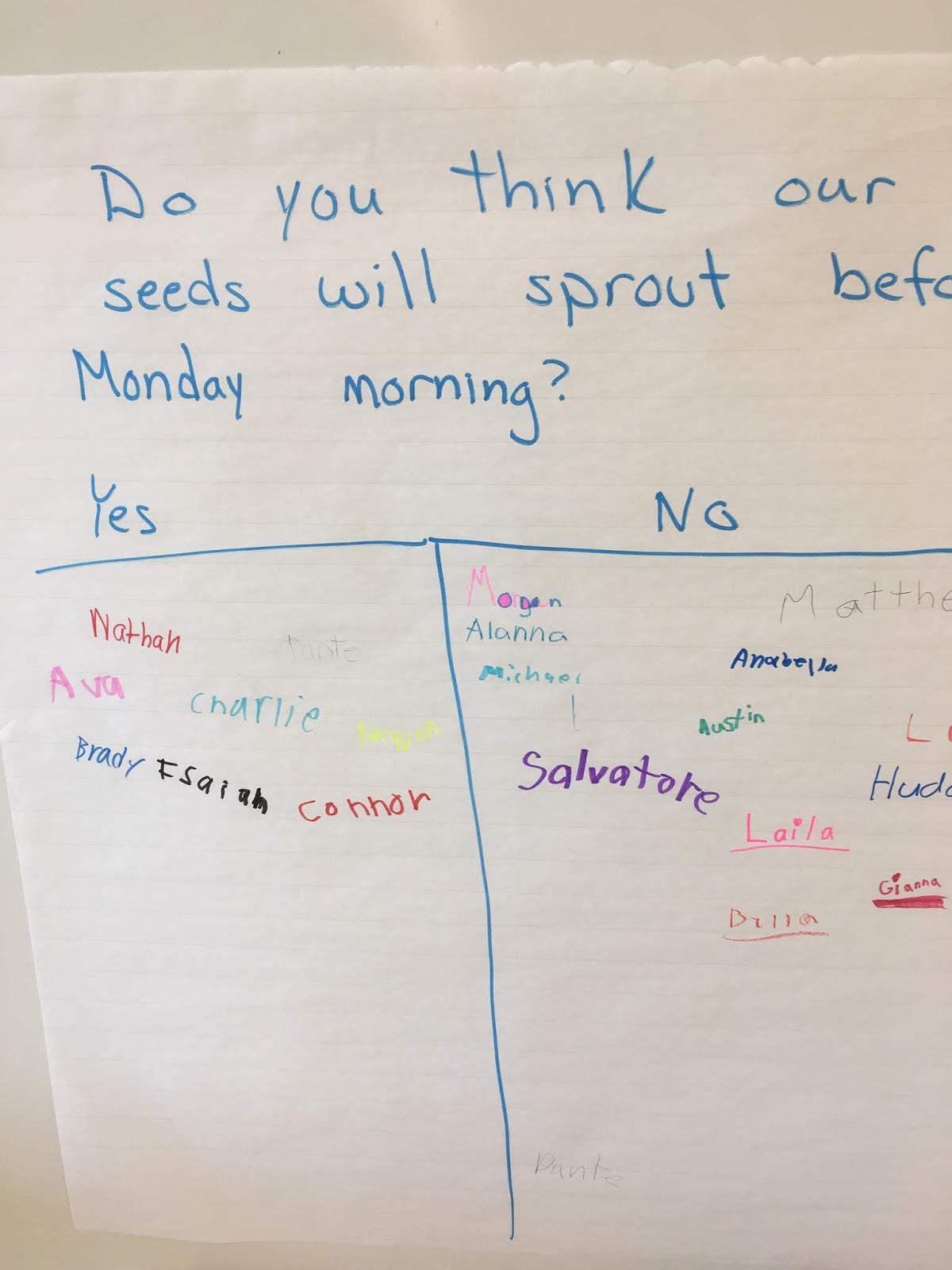 Brilliant In 2nd Grade