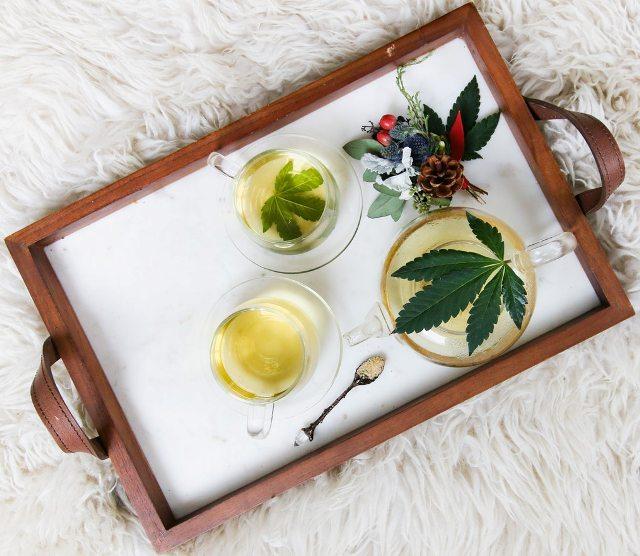 is cbd oil addictive myths facts cannabidiol non-habit forming cannabis