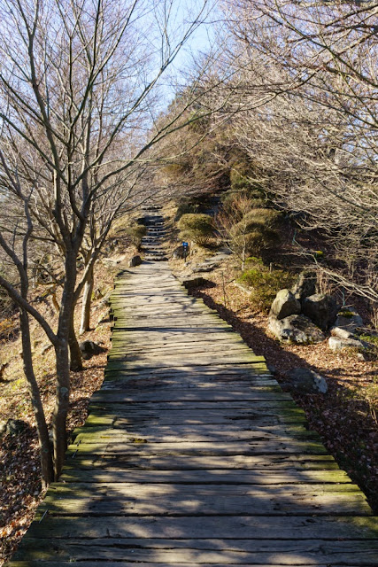 ボードウォーク~伊豆の国パノラマパーク(葛城山)