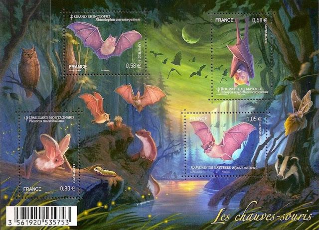 France 2013 Bats