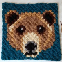 Brown Bear C2C Square