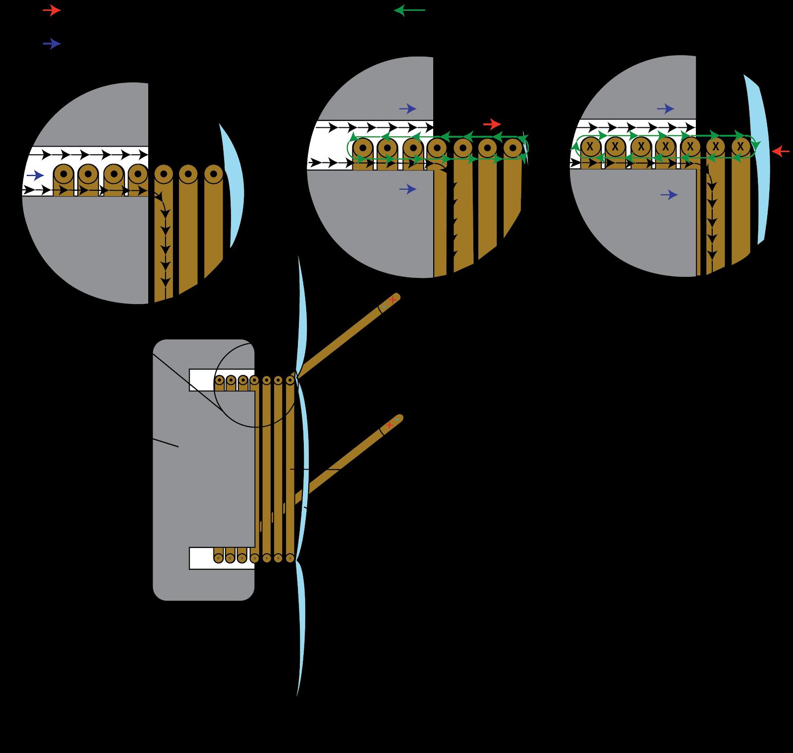studio headphones speaker wiring diagram headphone [ 1600 x 1520 Pixel ]