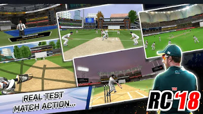 Real Cricket 18 2.0 Update Features