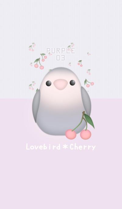 Lovebird&Cherry/Purple 03