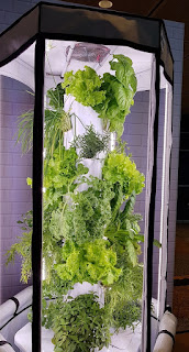 An urban farming solution.