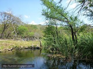 Cenotes+de+Candelaria+Guatemala+%25284%2529 - Guía turística – Cenotes de Candelaria