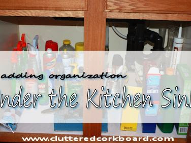 Adding organization under the kitchen sink