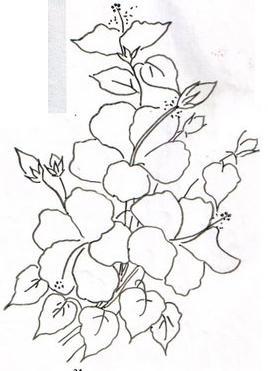 pintura em tecido risco flores hibiscos