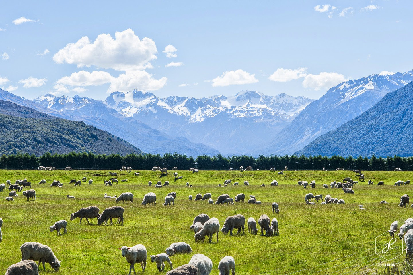 Arthur's Pass - He Traveled Around New Zealand In A Camper Van… This Is What He Saw.