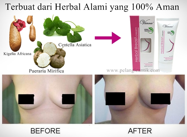 Bahan Alami Vienna Herbal Breast Cream