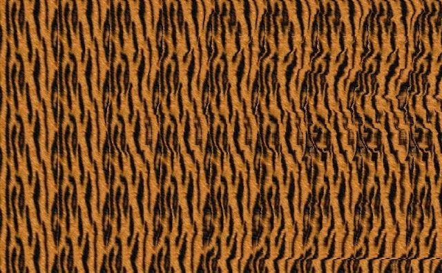 Mind Twister Stereogram Picture