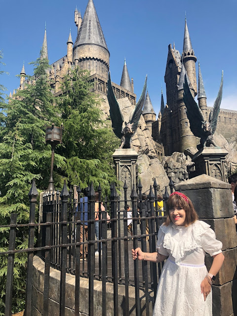 The Wizarding World of Harry Potter Universal Studios Japan
