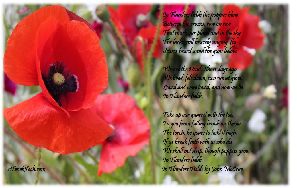 Living Vancouver Canada: Canada Remembers - A Remembrance ...