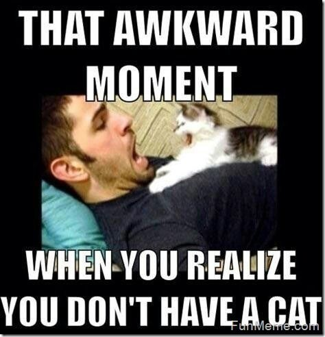 The awkward moment when you realize you don't have a cat