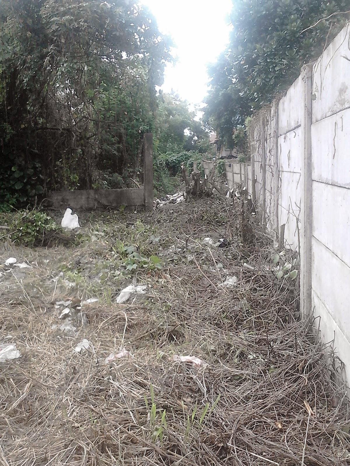Jasa potong rumput dan perapihan lahan