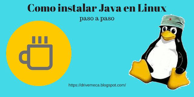 drivemeca instalando java en linux paso a paso