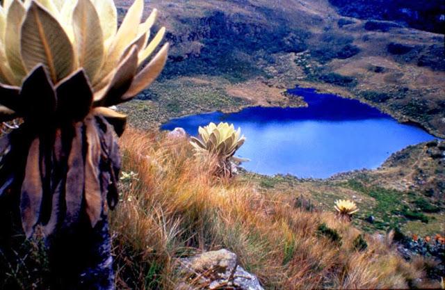 laguna-iguaque-mochilear-viajar-Colombia