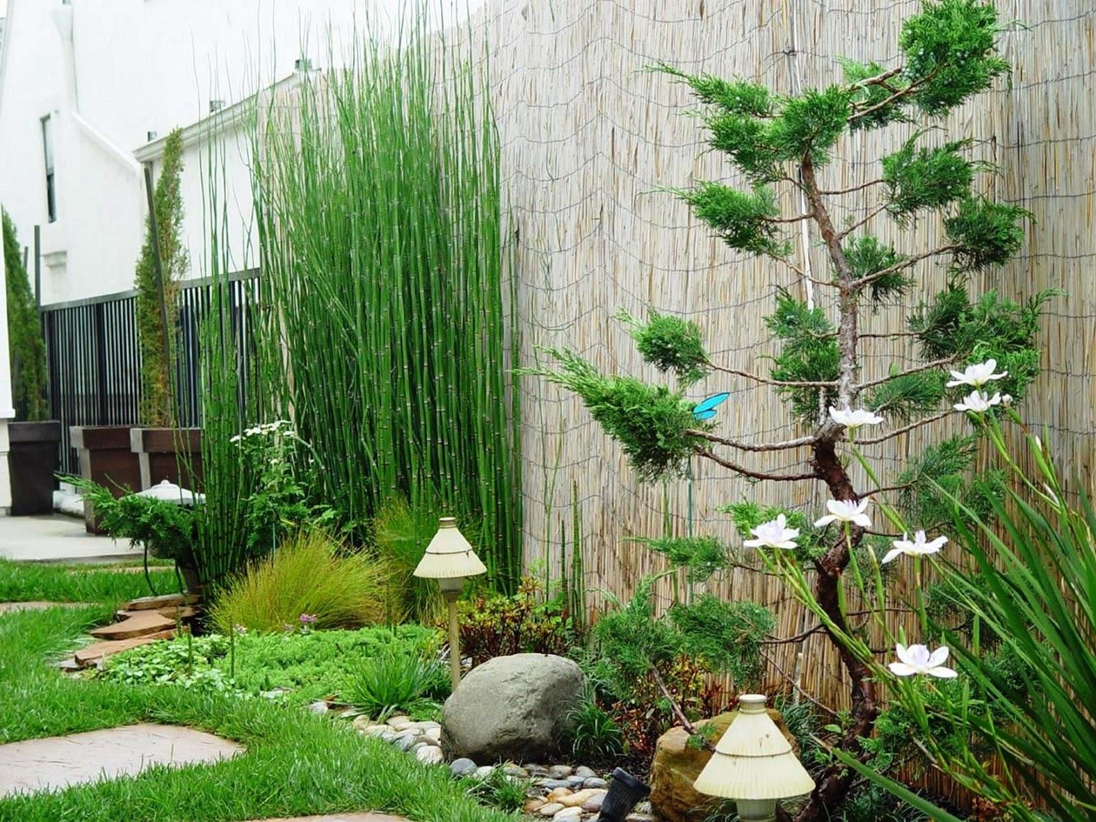 30 Desain Taman Minimalis Belakang Rumah Di Lahan Sempit Namun