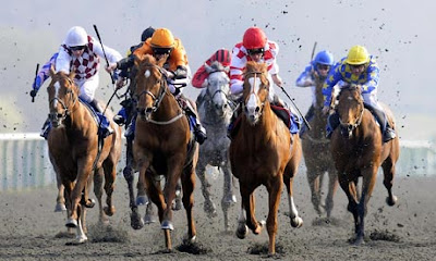 racing tips, winning racing tips, betting tips