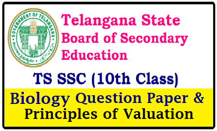 Telangana SSC /10th Class Public Examinations 2019 Biology Question Papers and Principles of Valuation Download Telangana 10th/SSC 2019 Biological Science Question Papers with BSE Principles of Valuation Download | TS 10th ClassBiological Science Model Papers 2019 | Download Telangana SSC Public Exam 2019 Question Papers | All Subjects question papers with Answers Kets/Principles of Valuation | TS 10th Biological Science Model Paper 2019 BSE Telangana 10th Sample Paper 2019 | BSE Telangana 10th Biological Science Model Paper 2019 TS SSC Question Paper 2019 | Telangana SSC Biological Science Question Paper 2018 - 2019 | TS-telangana-10th-ssc-2019-Biology-bio-Science-question-paper-BSE-Principles-of-valuation-answer-keys-download Telangana 10th Class/SSCPhysical Science Question Papers 2019 | Download PDFs with BSE Principles of Valuation/2019/04/telangana-ssc-10th-class-public-exams-2019-biology-biological-science-question-papers-principles-of-valuation-indicators-download.html