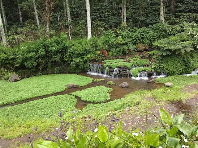 Objek Wisata Green Paradise Pagar Alam