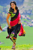 Shruti Hassan Full HD Pics Gallery | Shruti Hassan HD Wallpaper | Shruti Hassan hot Bikini images | top 10 hottest South Indian actresses |