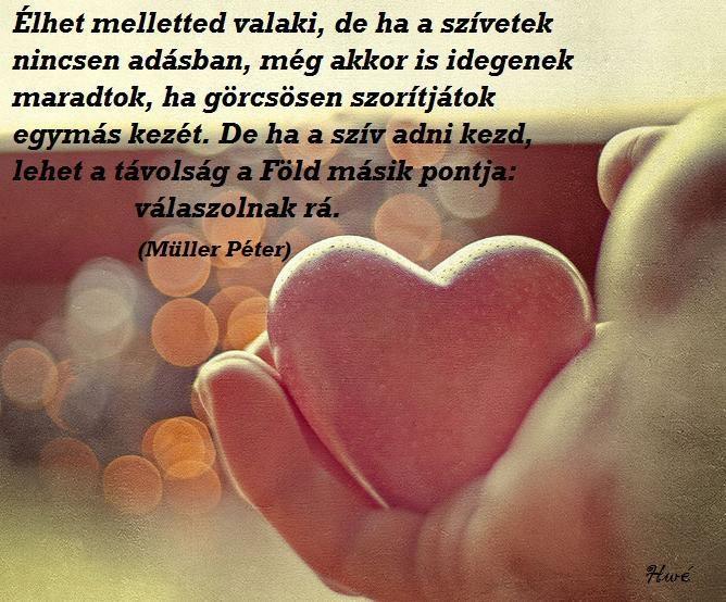 a szív idézetek Facebook idézetek: A szív adása