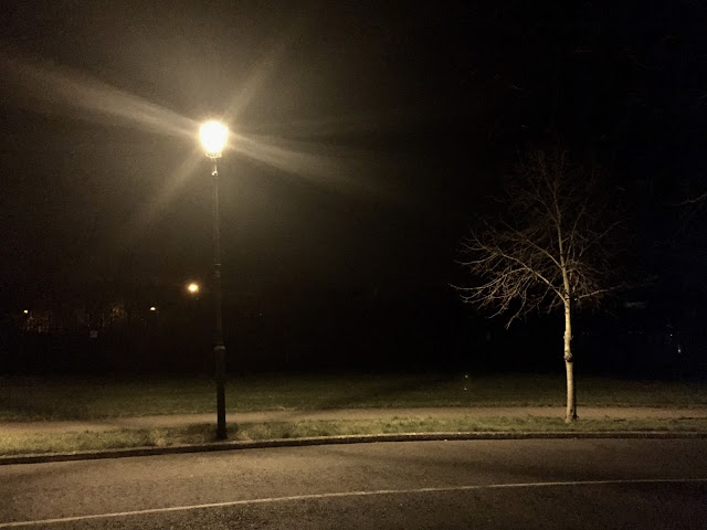 Lamppost in the night with a tree.