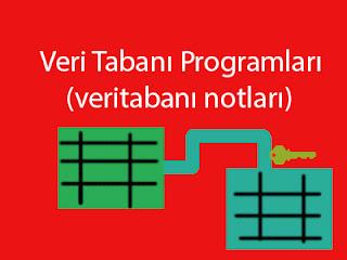 veritabanı programları