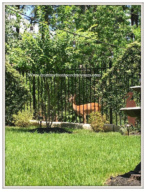 Suburban Farmhouse Backyard-Wild Life-Deer- Country Garden- From My Front Porch To Yours