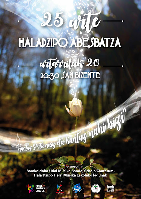 Cartel del concierto de 25 años de Hala Dzipo