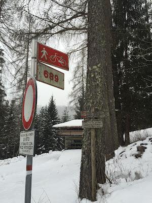 Sentiero 689 (Valle del Biois Cima D'Auto Group)